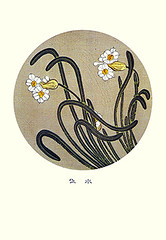 Bunchflower daffodil (Japanese Flower and Bird Art) Tags: flower bunchflower daffodil narcissus tazetta amaryllidaceae jakuchu ito ukiyo woodblock picture book japan japanese art readercollection