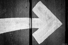 swipe right (intylerwetrust72) Tags: sign nikon sigma right hannover arrow d800 swipe erlebniszoo 150mmf28os