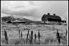 Collegiate Peak Ranch (yeoldmenogynguide60) Tags: ranch white black mountains monochrome barn rustic peak western salida collegiate collorado
