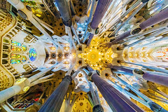 URBAN FOREST (DocTony Photography) Tags: barcelona church architecture spain europe catholic sony espana doctony a7rm2