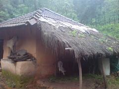 DSC03546 (Gokul Chakrapani) Tags: waterfalls karnataka westernghats bolle charmadi