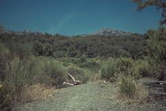 Proyecto extremidades (natipetri_fotografia) Tags: espaa naturaleza mountain green nature headless self legs el only catalunya piernas bruc natipetri proyectoextremidades