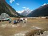 . (S_Artur_M) Tags: travel india landscape lumix panasonic valley himalaya landschaft indien sikkim reise yumthang tz10