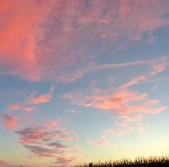 Cagnotte, Landes (Marie-Hélène Cingal) Tags: france sudouest aquitaine landes 40 nwn sky sunset nuages clouds