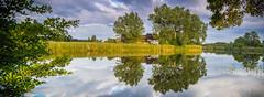 upside down (lactivitiez) Tags: trees sunset summer sun house lake water mirror see sonnenuntergang sommer teich spiegelung schilf farben schwaben weiher 2016 haslach aulendorf oberschwaben schussental