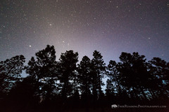 Zodiacal Light on the Coconino Rim (Free Roaming Photography) Tags: americansouthwest arizona arizonatrail coconinorim coloradoplateau darkskies darksky desertsouthwest evergreenforest evergreentrees kaibabnationalforest kaibabplateau nightsky northernarizona pineforest ponderosapinetrees satellite silhouette silhouettedtrees starrynightsky stars zodiacallight tusayan unitedstates