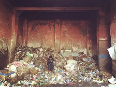 Will You Believe Me If I Say This Is Smelling Roses? (Mayank Austen Soofi) Tags: delhi walla garbage will you job work believe me if i say this is smelling roses