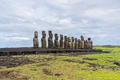 The Fifteen (Rice Bear) Tags: chile travel polynesia islands platform statues adventure moai easterisland rapanui ahu ahutongariki