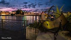 Geneva by night (pawae) Tags: geneva genve genf suisse switzerland schweiz nuit lumire