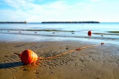 Stranded buoy (Mario Ottaviani Photography) Tags: stranded buoy boa spiaggiata low tide bassa marea lowtide bassamarea beach beached shore sea seascape sony alpha canon fotodiox gabicce italy italia