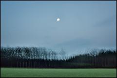 Om natten (Jonas Thomn) Tags: multiexposure multiexponering 10x night natt mnen moon mne skog forest trd trees grass grs field ker sky himmel incameramultiexposure