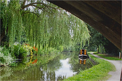 Tranquility. (Petefromstaffs) Tags: tranquility trent mersey alrewas staffordshire canon canal dog walkers elements