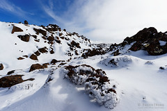 20160807-29-Rodway Range bouder Field completely filled with snow (Roger T Wong) Tags: australia mtfield mtfieldnationalpark np nationalpark rodwayrange sel1635z sony1635 sonya7ii sonyalpha7ii sonyfe1635mmf4zaosscarlzeissvariotessart sonyilce7m2 tasmania bushwalk hike outdoors snow tramp trek walk winter