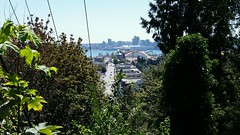 View from Ashdown Park (walneylad) Tags: ashdownpark pembertonheights northvancouver britishcolumbia canada view scenery nature cityscape pembertonavenue burrardinlet cruiseship downtown cars street road skyline summer august bluesky sun trees leaves cable canadaplace harbourcentre