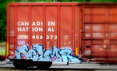 selmr (timetomakethepasta) Tags: selmr freight train graffiti celm gtw canadien national cn moms ktc soak moniker boxcar art