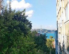 Perfect Color in Istanbul (tolgamert3485) Tags: color manzara landscape boaz bosphorus yeil green htc m9 kadraj nature deniz sea tree
