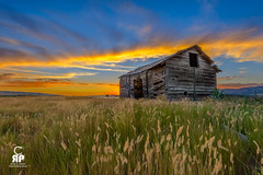 McMurtrey Sunset (Chris Ross Photography) Tags: d800 idaho sunset cascade homestead barn old wheat field red orange blue brown