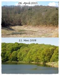 Periodischer See am Bauergraben im Sdharz , NGIDn1275620164 (naturgucker.de) Tags: naturguckerde periodischersee cannettdeistung bauerngrabenundumgebung ngidn1275620164