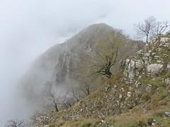 Poggio l'Omo (Emanuele Lotti) Tags: italy mountain montagne trekking italia novembre lima hiking val tuscany 23 monte toscana amici tosco montagna emiliano monti appennino gruppo pegaso omo 2014 camaiore poggio escursionismo escursioni limano