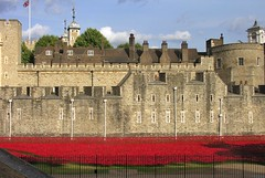 Tower from the North (jere7my) Tags: greatbritain vacation england london castle history wall memorial unitedkingdom wwi treasury towers historic prison worldwari poppies soldiers moat unionjack fortress englishhistory arrowslits toweroflondon veterans artinstallation 1066 casualties commemoration 2014 centenary royalmint wardead thetoweroflondon crenelations tompiper flinttower hermajestysroyalpalaceandfortress paulcummins towerpoppies bloodsweptlandsandseasofred 888246 ceramicpoppies