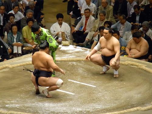 日馬富士 画像21