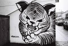 Sabre Tooth Tiger (Rich Presswood) Tags: street leica bw white streetart black art film graffiti kodak iso400 sheffield trix summicron graffitti analogue m6 leitz tx400