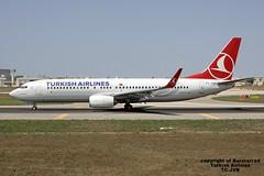 TC-JVB LMML 09-07-2016 (Burmarrad) Tags: cn aircraft airline boeing airlines turkish registration 40990 7378f2 lmml tcjvb 09072016