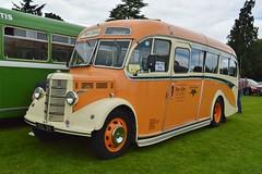 KEL94 (PD3.) Tags: kel94 kel 94 bedford ob duple bus buses psv pcv hampshire hants england uk alton anstey shamrock rambler
