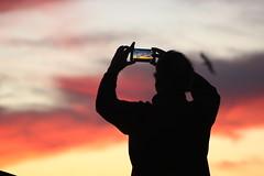 IMG_4451 (FlorenciaMG) Tags: sunset celphone bird cloud atardecer telefono fotografa pajaro nuve nuves