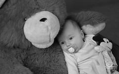 Giulia (Sofia Photographie) Tags: baby photo bb nantes giulia nouveaun nikonfr