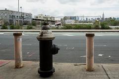 Fire Hydrant, Brooklyn