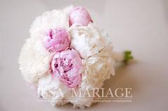 buchet nunta bujori (IssaEvents) Tags: buchet mireasa din bujori roz pal si alb bucuresti valcea slatina issaevents issamariage