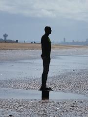 DSCF0650 (SierPinskiA) Tags: sea shells beach liverpool sand ironman pools barnacles ironwork mayday seashore merseyside anthonygormley irishsea 2016 anotherplace crosbybeach blundellsands fujixs1