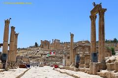 Gerasa, Jerash, a view of the Columns and the Cathedal on the background (ssspnnn) Tags: gerasa jerash jordan jordania romanempire historicalsites canoneos70d snunes spnunes spereiranunes nunes decapolis archeology wow