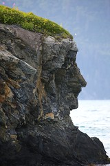 "Rock Maiden Portrait Prince William Sound Valdez Alaska USA ""North America (eriagn) Tags: northamerica usa america alaska valdez princewilliamsound waterfall cascade water ice glacier snow mountain sea fiord fjord plummet cliff summer tree mountainous steep beauty sceneic rock rockface spray drift wet flora habitation ecosystem ngairehart ngairelawson eriagn travel photography fishing salmon tourism recreation landscape precipice icefield rockoutcrop island face abstract naturalportrait outline facialoutline sideview profile texture artistic wildflowers flowers fireweed daisies rockformation coastal myth legend flickrsbest littlestories picswithsoul overtheexcellence portrait exploreunexplored natureasabstractartist"