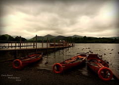 Northern Exposure (Wizard Snaps) Tags: keswick derwentwater lakes lakedistrict rowingboats skulls pleasure