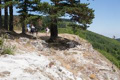 5D_IMG_6522 (Jeroen Kransen) Tags: bulgarije bulgaria    horse horseback equestrian horseriding paardrijden paardrit rodopen rhodopes