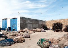 Fishing port (Testigo Indirecto) Tags: port empty emptyspace puerto fishing birds gaviotas sea marina