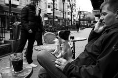 L1000762 (Wojtek_Ogorzelski) Tags: street city light shadow bw dog man girl oslo norway town day poland warsaw monochrom