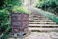 Entrance (travelingphotobook) Tags: film nature japan 35mm steps entrance natura sendai classica