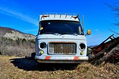 fiat 238 (riccardo nassisi) Tags: auto abandoned car truck pc rust italia fiat decay seat rusty 124 val camion wreck scrap piacenza ruggine relitto 238 rottame darda abbandonato epave abbandonata