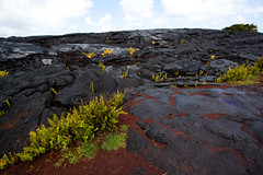 Day 6 : Hilo (Brad Capote) Tags: ocean park county cruise 2 orange black nature canon landscape photography eos hawaii harbor sand photographer mark ii bradley kauai 5d pearl hilo princes laval jurassic mk beltran capote