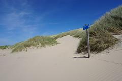 DSC00373 (Evert Bosdriesz) Tags: netherlands nederland castricum noordhollands duinreservaat