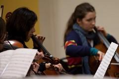 LYCO 2016-07 Winter Orchestra Workshop 11 - Cellos (lyco.orchestra) Tags: launcestonyouthandcommunityorchestra lyco winterochestraworkshop lycowinterorchestraworkshop lyco2016winterorchestraworkshop strings violoncello cello