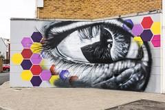 Graffiti or artwork, along the Foyle Embarkment (email@allenreavie.photography) Tags: graffiti hexagon blockbusters foyle embankment londonderry eye artwork nikon 810