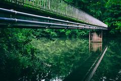 Bridge over Water (Al Fed) Tags: 20160721 kg enz water bridge green hell reflection vaihingen germany woods river slow lines sv