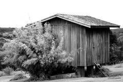 Apenas uma casinha (Sophie Carrire) Tags: madeira casinha