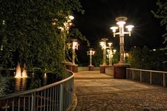Night Lights (John C. House (out of pocket)) Tags: bridge night reflections lowlight nikon knoxville streetlights tennessee nik wordsfair everydaymiracles d700 johnchouse
