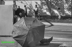 Calling (Halcon122) Tags: streetphotography street woman umbrella barefoot phone urban kingston ja candid bw olympusem5markii jcf