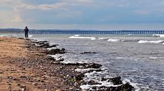 Day 7 - Beachcomber (PoolieGirl) Tags: summer 2016 beach coast sand sands sea side seaside shore line coastline north east england ne seetley hartlepool headland